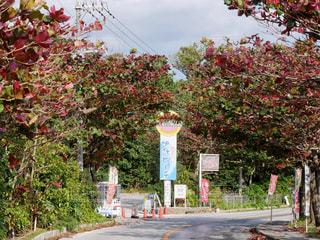 伊計島ドライブの写真・画像素材[2007313]