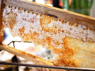 蜂蜜の写真・画像素材[2210136]