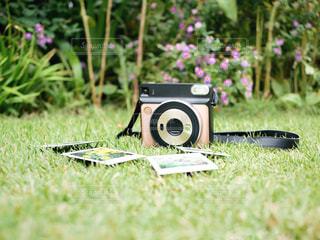 草で覆われた畑の上に横たわるおもちゃのクローズアップの写真・画像素材[3206721]