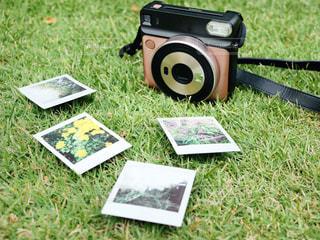 芝生の椅子のカップルが草で覆われた畑の上に座っているの写真・画像素材[3206722]