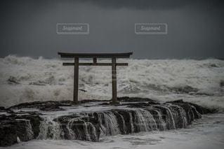水の体の横にあるベンチの写真・画像素材[769873]