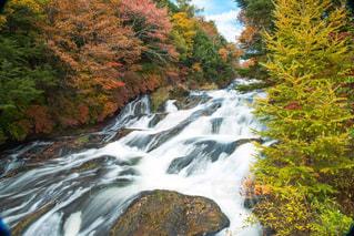森の中の滝の写真・画像素材[812117]