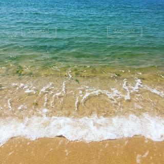 海の写真・画像素材[649488]