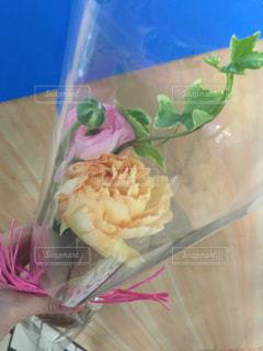 花の写真・画像素材[650445]