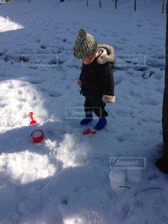 冬の写真・画像素材[650642]