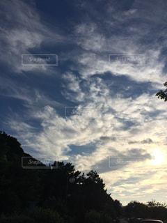 空の写真・画像素材[650916]