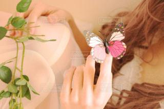 ピンクの蝶々が止まってる女性の手の写真・画像素材[988844]