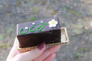 フォトジェニックなチョコレートケーキの写真・画像素材[3129931]