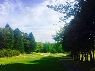 ゴルフ場の写真・画像素材[652342]