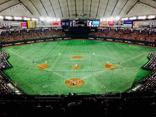 草の中に立っている野球選手のグループの写真・画像素材[752487]