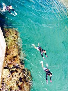 水で泳ぐ男の写真・画像素材[752526]