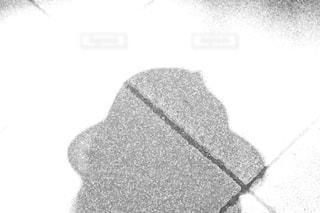 帽子の影の写真・画像素材[1298511]
