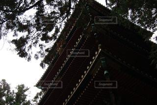 秋の写真・画像素材[654245]