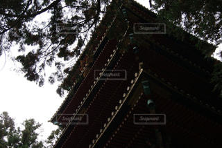 秋 - No.654245