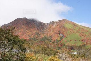 秋の写真・画像素材[656408]
