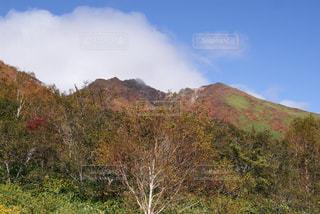 秋の写真・画像素材[656409]