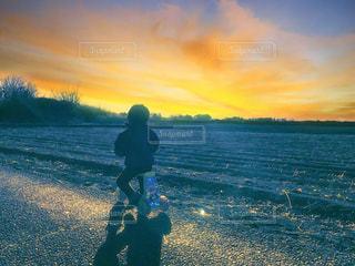 夕日の写真・画像素材[661085]