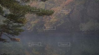 背景の山と木の写真・画像素材[1610258]