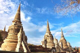 タイの写真・画像素材[658293]