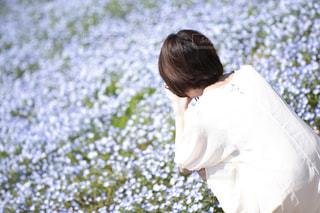 ネモフィラ畑と少女の後ろ姿の写真・画像素材[3138610]