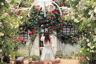 花の前に立っている女性の写真・画像素材[813335]