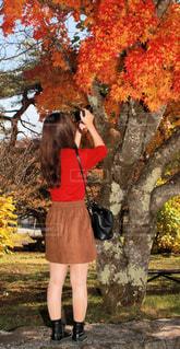 紅葉を撮影する女性 - No.840704