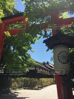 京都の写真・画像素材[678783]