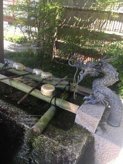 京都の写真・画像素材[678803]