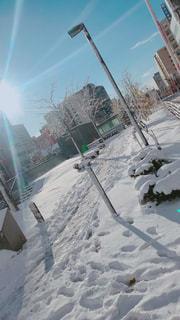 雪の写真・画像素材[1636779]