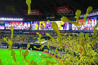 黄色の写真・画像素材[656586]