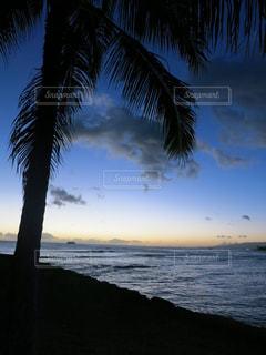 ハワイの写真・画像素材[657171]
