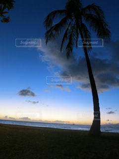 ハワイの写真・画像素材[657172]