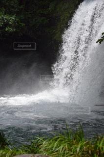滝の写真・画像素材[658844]