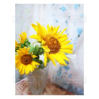 花の写真・画像素材[690335]