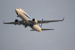 飛行機の写真・画像素材[660954]