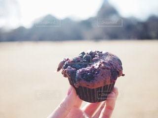 公園でチョコレートマフィンを食べるの写真・画像素材[3383873]