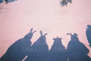 影の写真・画像素材[660797]