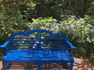 公園の真ん中に座っている木製のベンチの写真・画像素材[1234552]