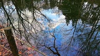 公園の写真・画像素材[676816]