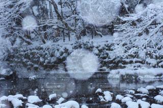 雪に覆われたフィールド - No.981652