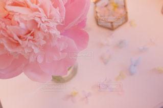 近くの花のアップの写真・画像素材[886665]