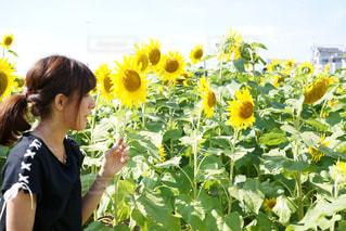黄色の花の前に立っている女性の写真・画像素材[887586]