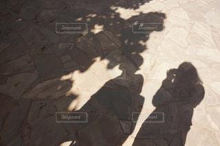 近くに傘のアップの写真・画像素材[922180]