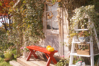 庭に大きな赤い椅子の写真・画像素材[922811]