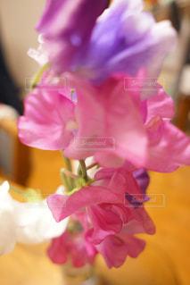 近くの花のアップの写真・画像素材[966010]
