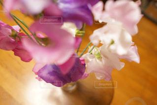 近くの花のアップの写真・画像素材[966011]