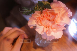 近くの花のアップの写真・画像素材[1004988]