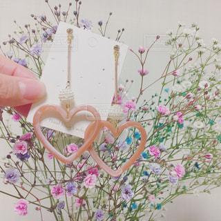 近くの花のアップの写真・画像素材[1013056]