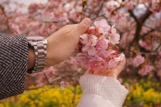 花を持っている人の写真・画像素材[1024961]