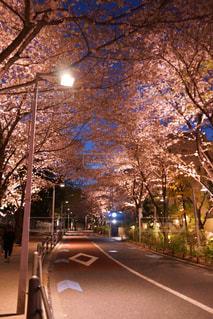 夜の街の景色の写真・画像素材[1160551]